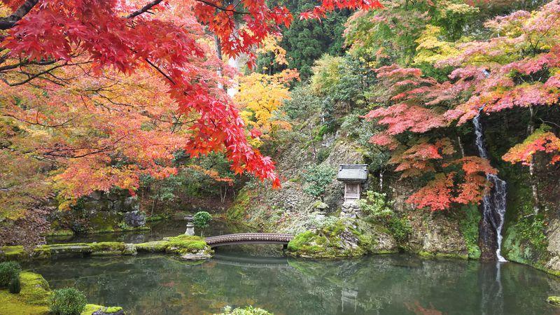 岐阜・郡上八幡「慈恩禅寺」美しい庭園と念珠づくり体験