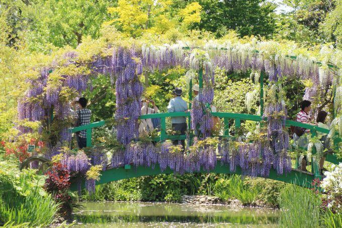 最大の見所!印象派庭園、花美の庭