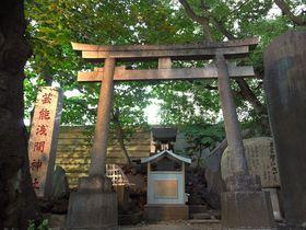 新宿で古典芸能をめぐる旅!行っときたいスポット5選