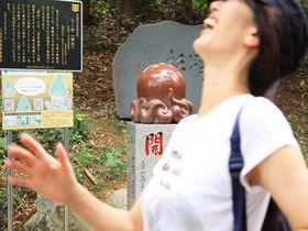 西の大笑い高尾山、東のシュールな筑波山!行くならどっち?