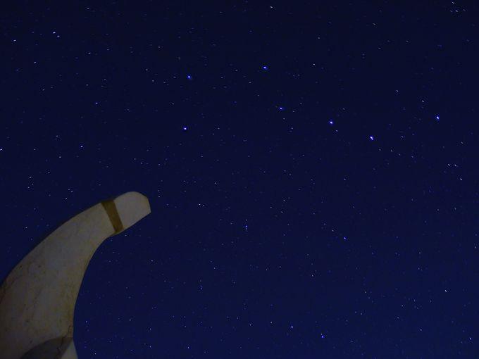 基準星となる北極星とオリオン座、そして好きな星座を見つけてみよう!