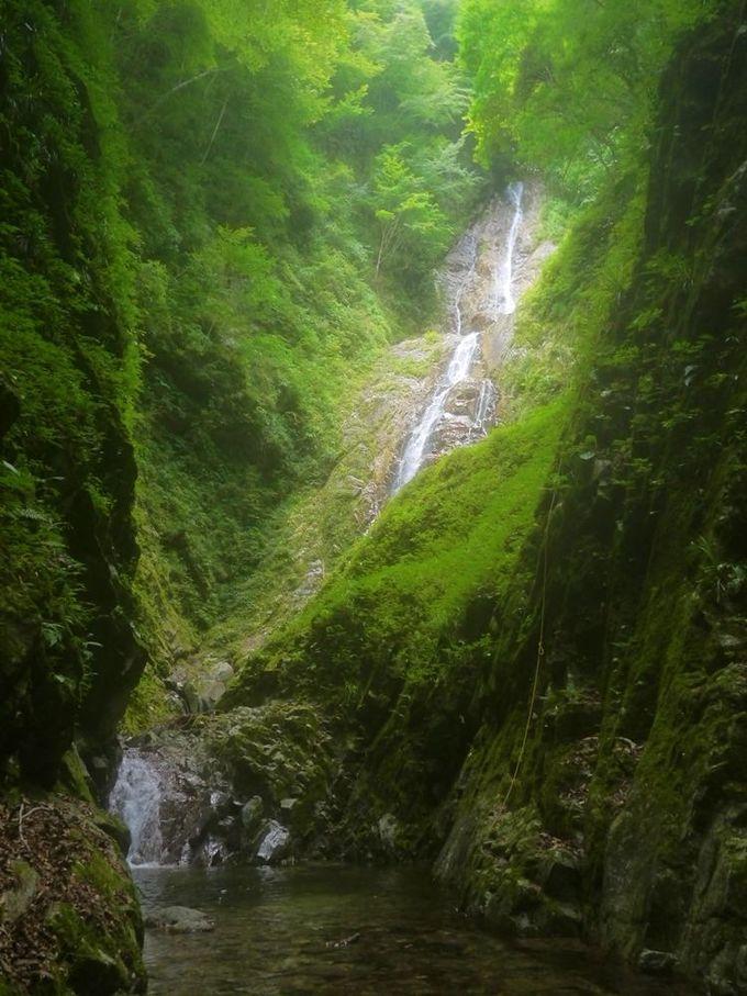 大絶景!モチコシ沢の大滝60メートル