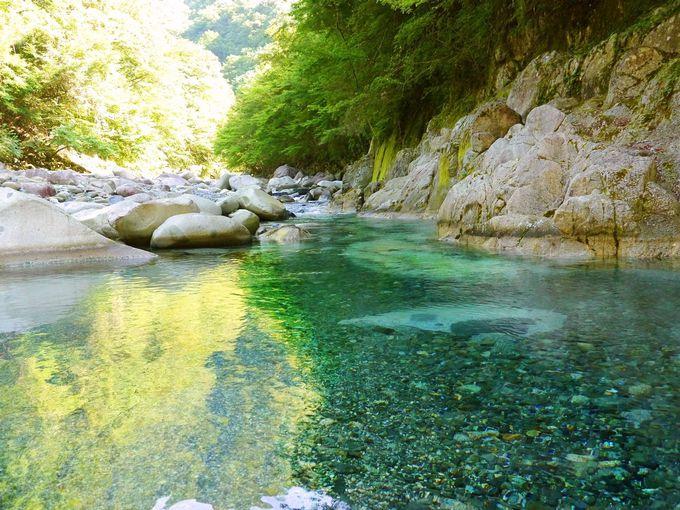 玄倉川入渓から始まる本当のユーシン渓谷