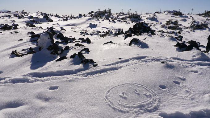 お絵かきフォトが楽しい坪庭スノーハイキング