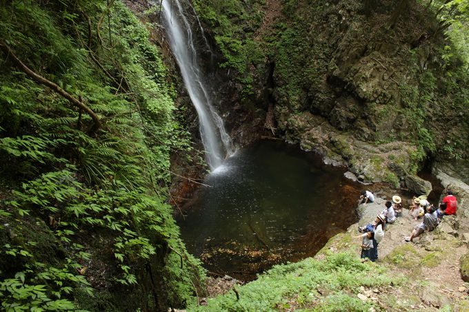 日本の滝百選「払沢の滝」