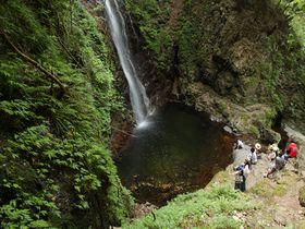 うの花ドーナツが絶品!東京唯一の百名瀑「払沢の滝」