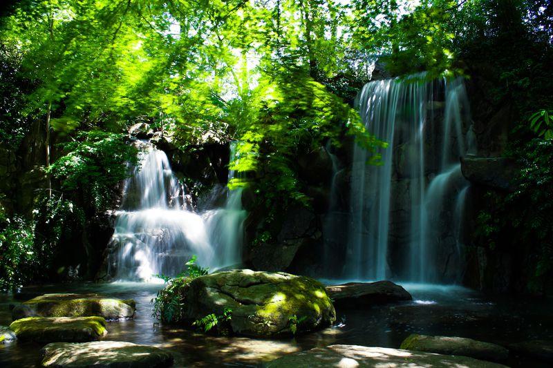 東京の屋外で楽しめる観光スポット10選 公園や自然でリフレッシュ!