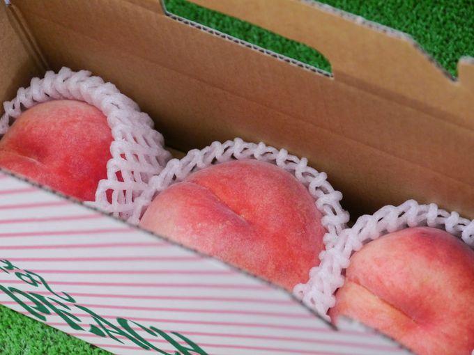 フルーツいっぱい!信玄餅ならぬ信玄桃が面白い