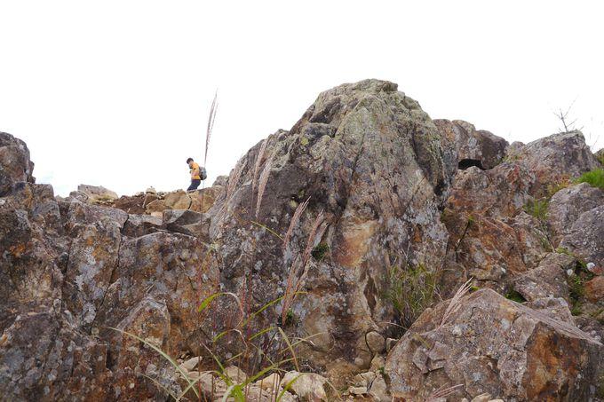 大菩薩峠の登山コース
