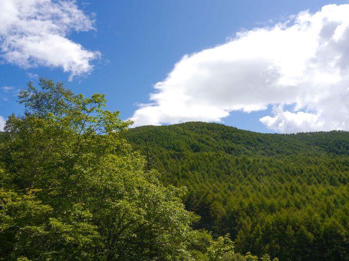 大弛峠が国師岳・北奥千丈岳の起点