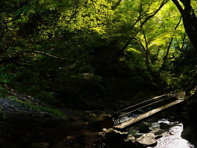 昇仙峡の裏ハイライト!板敷渓谷の大滝