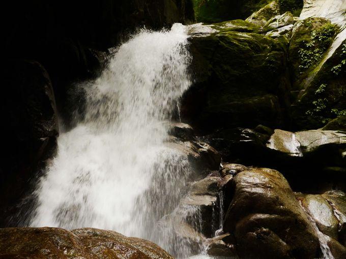 前半のハイライト!尾白川渓谷の錦滝がすごい爆流