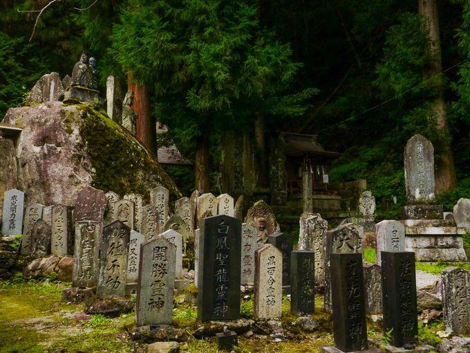 尾白川渓谷と日向山の起点は竹宇駒ヶ岳神社