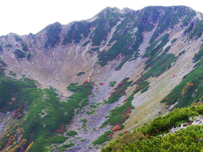 仙丈ヶ岳の三つのカールが大絶景過ぎて、さらにピークへ