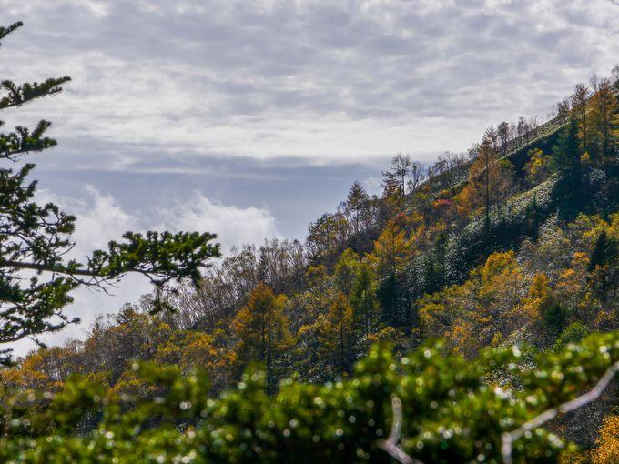 焼岳から見える明神岳や穂高岳