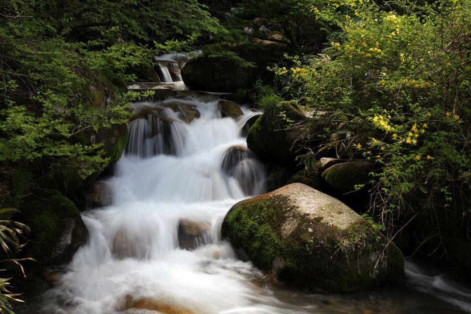 公園のホームページに載っていないワイルドな滝を探そう