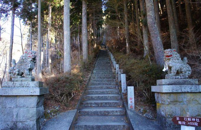 比較的歩き易く、短時間のハイキングコース