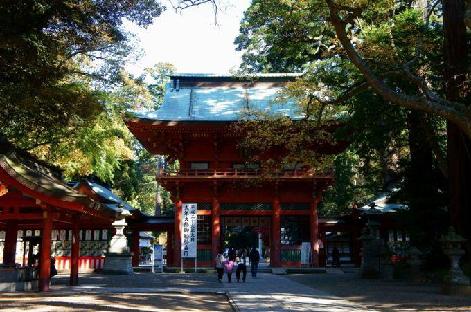 関東最大最古の聖地「鹿島神宮」(茨城県鹿嶋市)