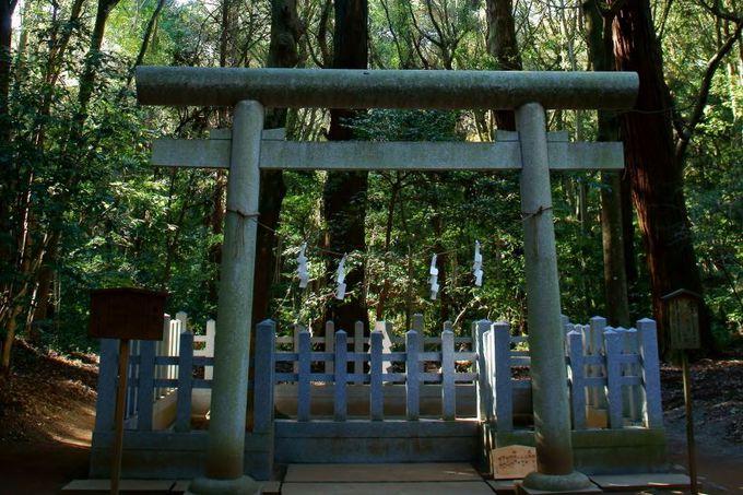 地震を起こす大鯰を押さえる鹿島と香取の「要石」