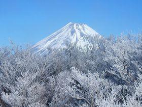 気軽にこんな絶景が!静岡・愛鷹連峰の最高峰・越前岳に登ろう!