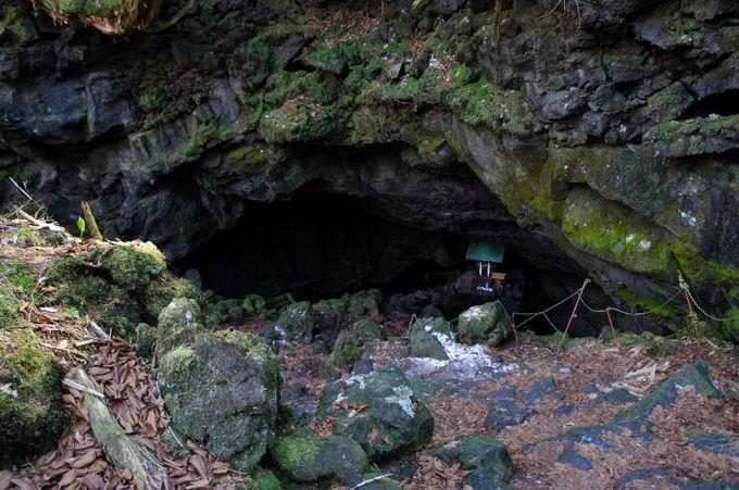 龍神がすむという「竜宮洞穴」(セノ海神社)