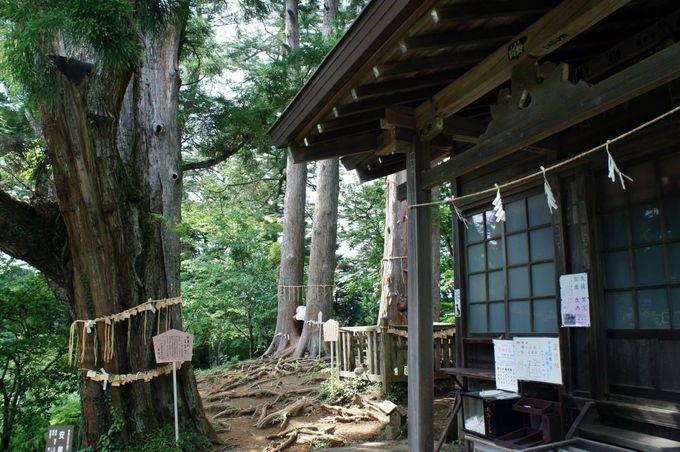 縁結び・子宝・安産祈願のパワースポット!武蔵御嶽神社・産安社