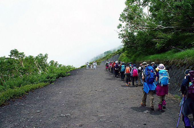 初めての富士登山でも安心!専門登山ガイドが引率!