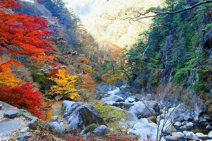 奇岩・巨岩、清流が織り成す渓谷美!