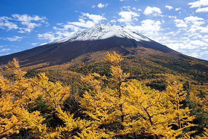 富士山の自然を気軽に楽しめる御庭・奥庭