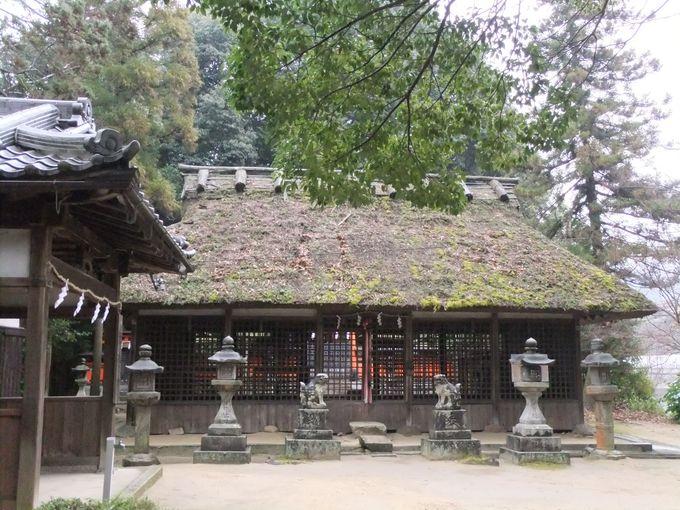 茅葺き屋根のほのぼの神社・夜都伎(やつぎ)神社