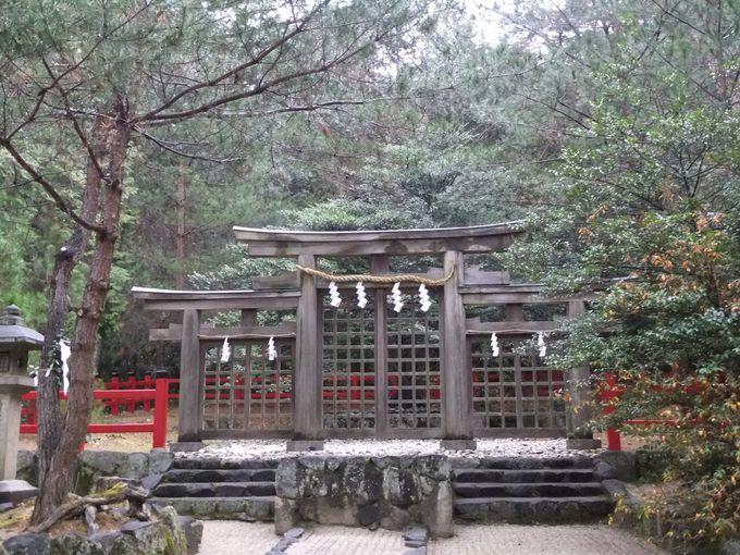 拝殿も本殿もない!別格の神々しさに息をのむ檜原(ひばら)神社