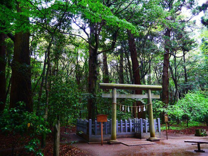 NHKドラマのロケ地にも!1000年の歴史超えた茨城観光スポット「鹿島神宮」