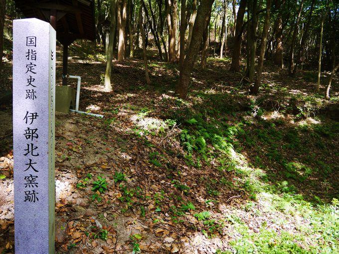 裏山に必見スポットあり!室町〜江戸時代の焼き物が散乱する「伊部北大窯跡」