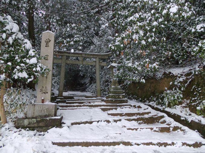 山の辺の道で、あなたのお気に入りの神社・お寺を見つけてみましょう!