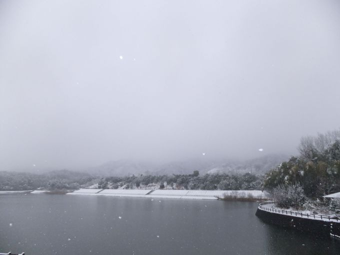絶好のご飯休憩ポイント「白川ダム」で体力回復!