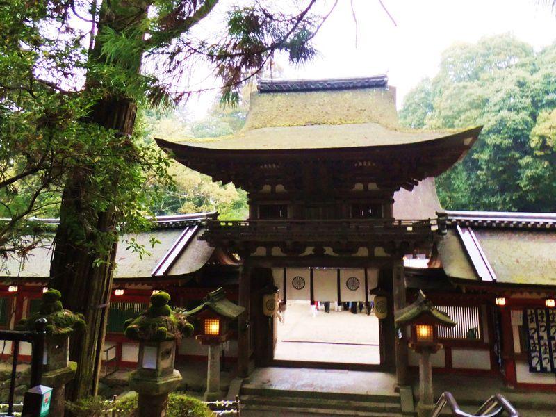 """日本最古の官道「奈良・山の辺の道」知る人ぞ知る""""北コース""""!石上神宮→ならまちへ!"""