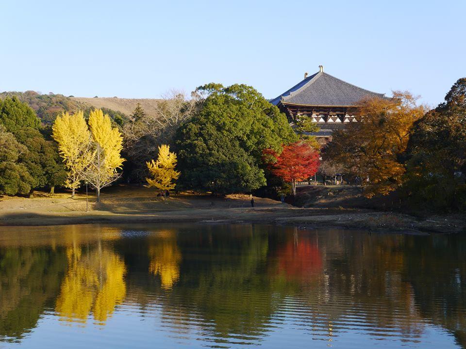 2.大仏池