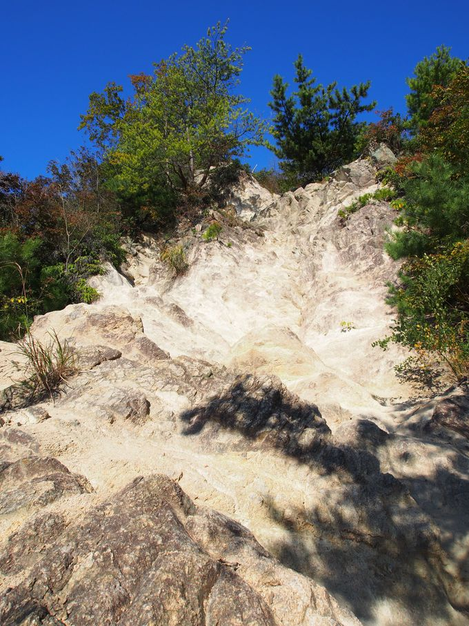 岩がむき出しの登山道はまさにロックガーデン!
