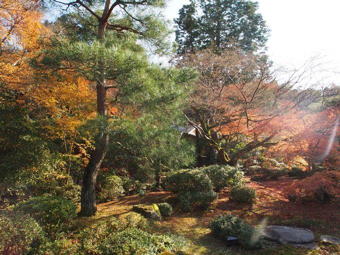 名作庭家、小堀遠州作の「霧島の庭」