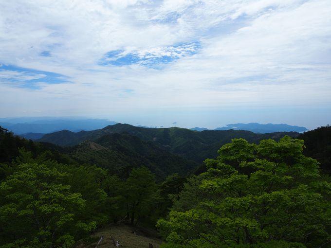 山から見渡す熊野灘の海