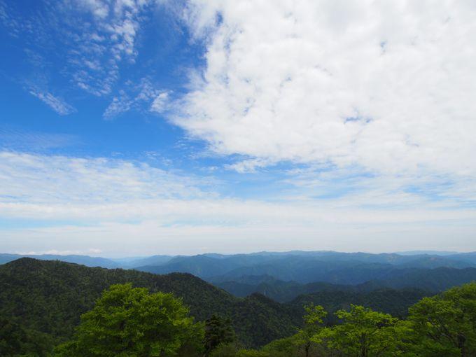 大台ケ原最高峰「日出ヶ岳」山頂へ!簡単に百名山を一座制覇!