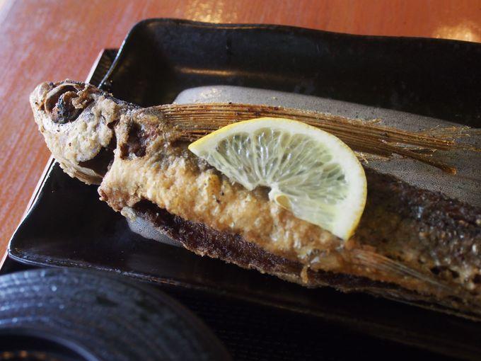 屋久島はグルメがたくさん!島の恵みを味わい尽くす