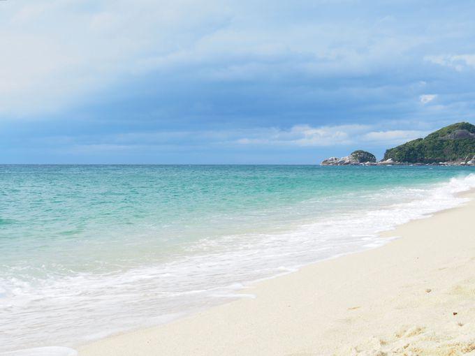 海ガメの来る浜、美しい「永田浜」を満喫!