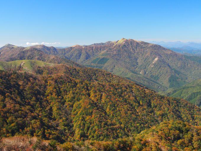 季節ごとの絶景!秋には紅葉の超人気スポット!