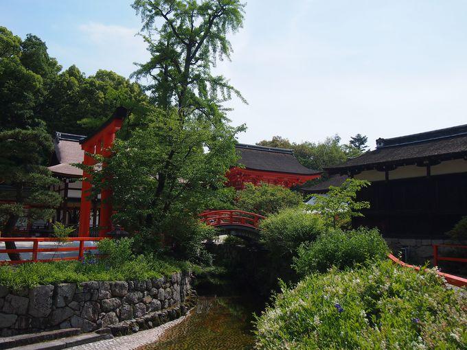 まずは、世界遺産・下鴨神社でお参り
