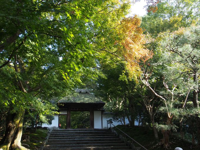 次は山門で有名な法然院