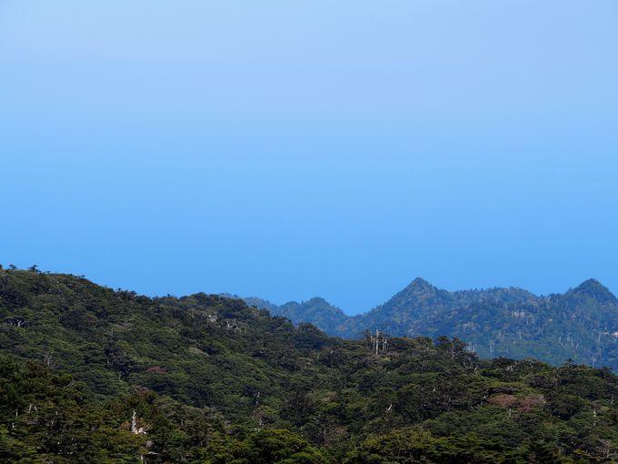帰りにもう一度黒味岳を望む絶景を!