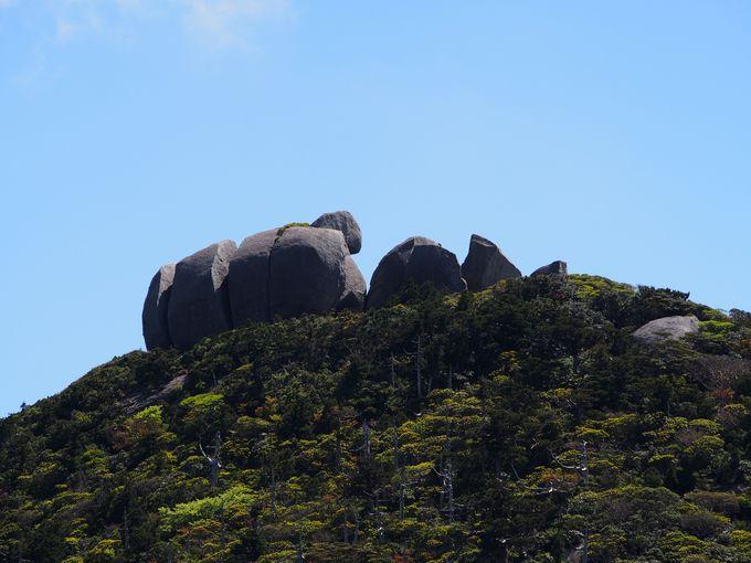 黒味岳登山は、ルート上の見どころもたくさん
