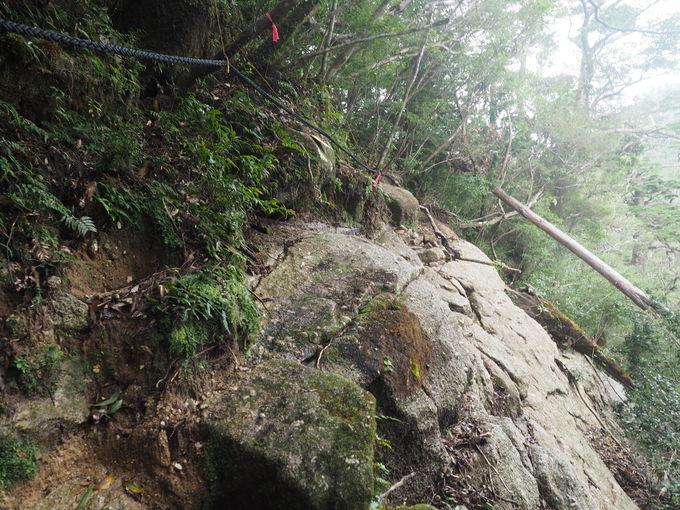 注意!登山道はハードでアスレチック!