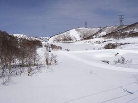 新幹線で雪山、温泉&グルメを堪能!湯沢エリアのスキー場おススメ5選